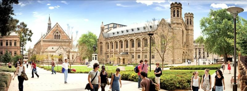 The University of Adelaideの様子